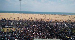 jallikattu protest at chennai marina beach